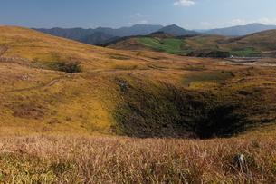 秋吉台のカルスト地形の写真素材 [FYI03876999]