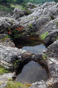 飛水峡 -層状チャートに形成された甌穴(ポットホール)-の写真素材 [FYI03877006]