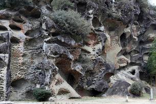 和歌山県 高池の虫喰岩 -蜂の巣状風化の典型例-の写真素材 [FYI03877032]
