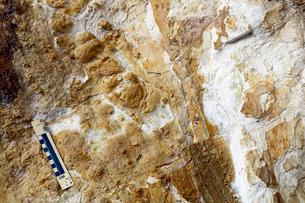 佐賀県 泉山磁石場 -有田焼陶石のクローズアップ-の写真素材 [FYI03877035]