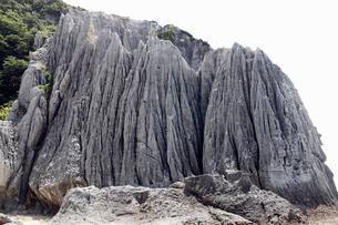 青森県 仏ヶ浦 -海岸の侵食地形-の写真素材 [FYI03877036]