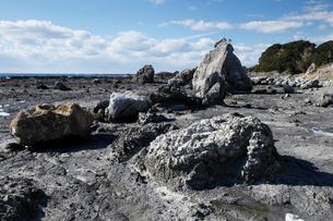 和歌山県 田並のさらし首堆積構造 -海溝付加体の地滑り堆積物-の写真素材 [FYI03877064]