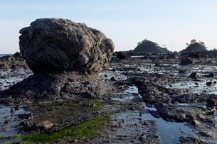 和歌山県 田並のさらし首堆積構造 -海溝付加体の地滑り堆積物-の写真素材 [FYI03877066]