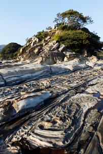 竜串海岸 地層の堆積構造の写真素材 [FYI03877090]