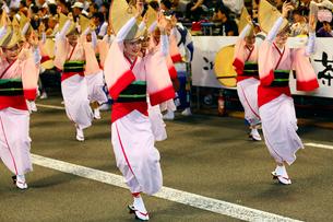 8月夏 徳島本場の阿波踊りの写真素材 [FYI03877148]