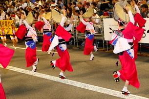 8月夏 徳島本場の阿波踊りの写真素材 [FYI03877149]