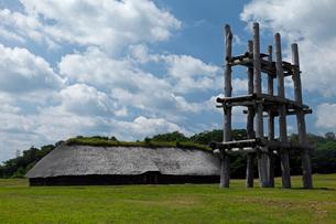 8月夏 三内丸山遺跡 日本最大の縄文遺跡の写真素材 [FYI03877153]