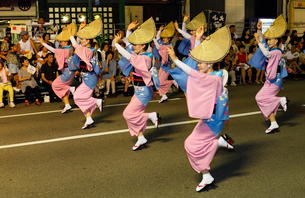 8月夏 徳島本場の阿波踊りの写真素材 [FYI03877181]