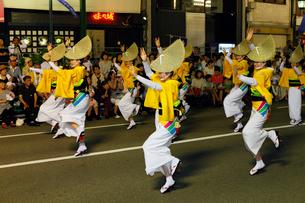 8月夏 徳島本場の阿波踊りの写真素材 [FYI03877182]