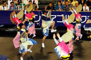8月夏 徳島本場の阿波踊りの写真素材 [FYI03877185]