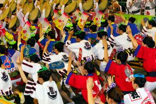 8月夏 徳島本場の阿波踊りの写真素材 [FYI03877186]