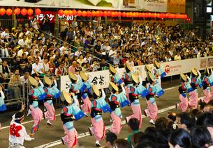 8月夏 徳島本場の阿波踊りの写真素材 [FYI03877188]