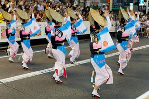 8月夏 徳島本場の阿波踊りの写真素材 [FYI03877193]