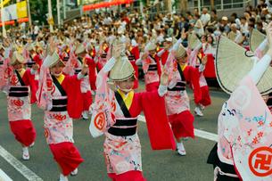 8月夏 徳島本場の阿波踊りの写真素材 [FYI03877201]
