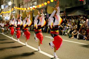 8月 本場徳島の阿波踊りの写真素材 [FYI03877212]
