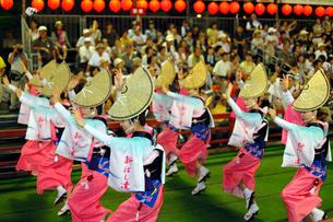 8月 本場徳島の阿波踊りの写真素材 [FYI03877222]