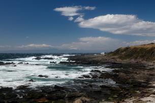 3月春,城ヶ島海岸に見られる地震性地殻変動地形の写真素材 [FYI03877231]