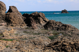 3月春,房総半島鴨川海岸の枕状溶岩の写真素材 [FYI03877234]