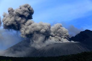 平成27年6月,桜島南岳火口からの爆発的噴火の写真素材 [FYI03877236]