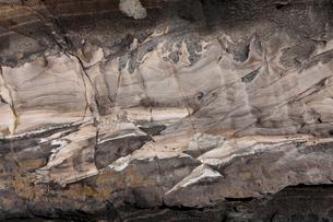 3月春 三浦半島城ヶ島の断層露頭の写真素材 [FYI03877246]