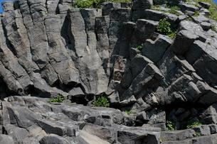 7月夏 根室車石 玄武岩の放射状節理の写真素材 [FYI03877257]