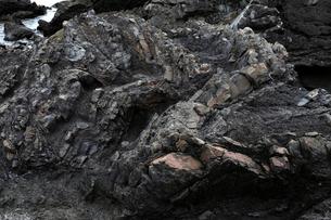 1月冬 地層の褶曲構造 四万十帯付加体堆積物の写真素材 [FYI03877261]