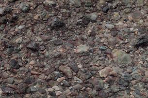 12月冬 礫岩の地質露頭 紀伊半島の田辺層群の写真素材 [FYI03877262]