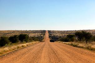 ナミビアの道の写真素材 [FYI03877397]
