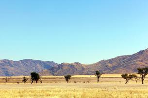 ナミビアの岩山の写真素材 [FYI03877400]