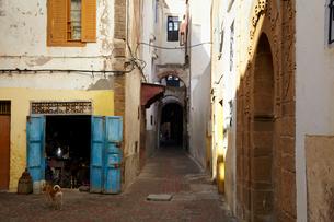 モロッコ,カサブランカの街路の写真素材 [FYI03877443]