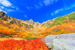 秋の中央アルプス千畳敷カール 紅葉と青空の写真素材 [FYI03877458]