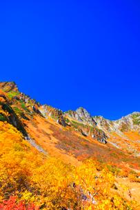 秋の中央アルプス千畳敷カール 紅葉と快晴の空の写真素材 [FYI03877459]