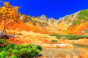 秋の中央アルプス千畳敷カール 剣ヶ池に紅葉と快晴の空の写真素材 [FYI03877472]