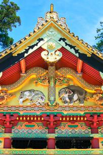 日光東照宮 上神庫に想像の象の写真素材 [FYI03877556]