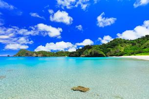 小笠原諸島父島 コバルトブルーの海と小港海岸の写真素材 [FYI03877627]