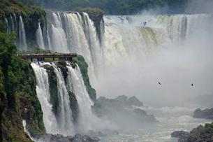 アルゼンチン側から見た世界遺産イフアスの滝の写真素材 [FYI03877649]