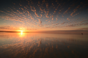 世界遺産シャークベイ、シェルビーチの夕暮れの写真素材 [FYI03877726]