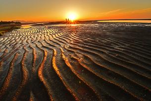 夕暮れの真玉海岸の写真素材 [FYI03877759]