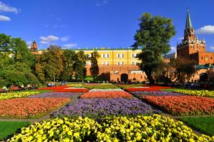 世界遺産モスクワのクレムリンと赤の広場の写真素材 [FYI03877778]