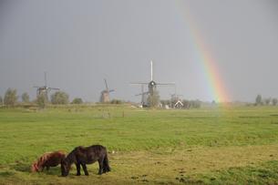 世界遺産キンデルダイクに架かる虹の写真素材 [FYI03877787]