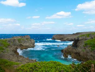 沖縄県 伊良部島 フナウサギバナタの写真素材 [FYI03878090]