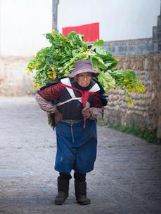 中国 雲南省 菜の花を背負うナシ族の女性の写真素材 [FYI03878121]
