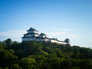 和歌山県 和歌山城の写真素材 [FYI03878143]