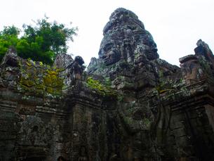 カンボジア シェムリアップ タ・プロームの写真素材 [FYI03878176]