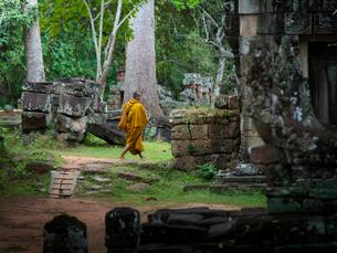 カンボジア シェムリアップ バンテアイ・クディの写真素材 [FYI03878177]