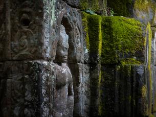 カンボジア シェムリアップ タ・プロームの写真素材 [FYI03878178]