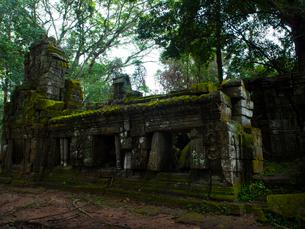 カンボジア シェムリアップ タ・プロームの写真素材 [FYI03878179]