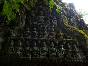 カンボジア シェムリアップ タ・プロームの写真素材 [FYI03878181]