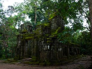 カンボジア シェムリアップ タ・プロームの写真素材 [FYI03878185]
