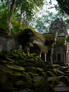 カンボジア シェムリアップ タ・プロームの写真素材 [FYI03878196]